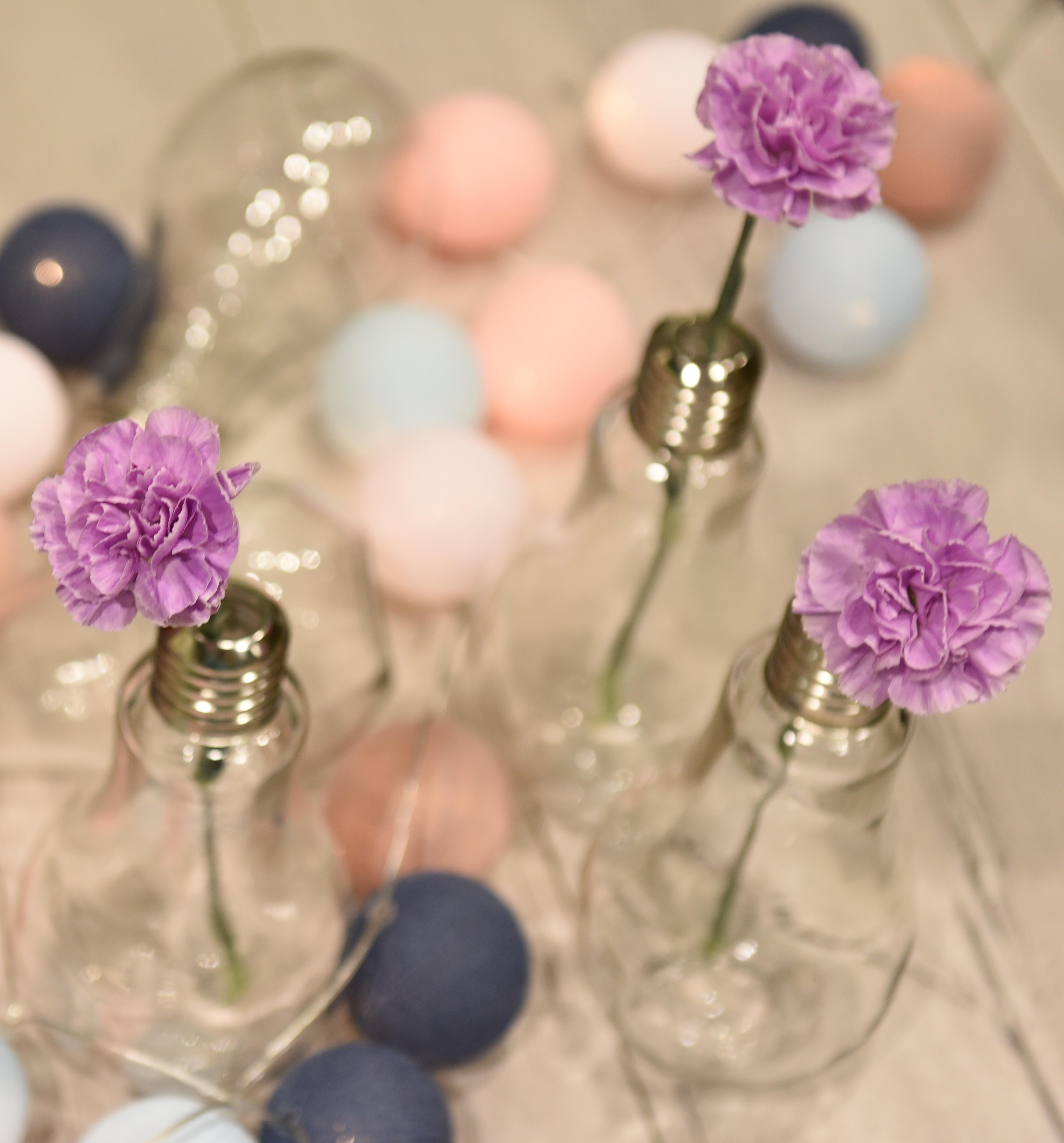 Kwiaciarnia Bukieciarnia Kwiaty Cięte Rośliny Doniczkowe